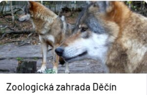 Tip na výlet Hotel S-centrum Děčín